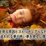 悪夢を見る原因とスピリチュアルな対処法 追われる夢や怖い夢を見る心理