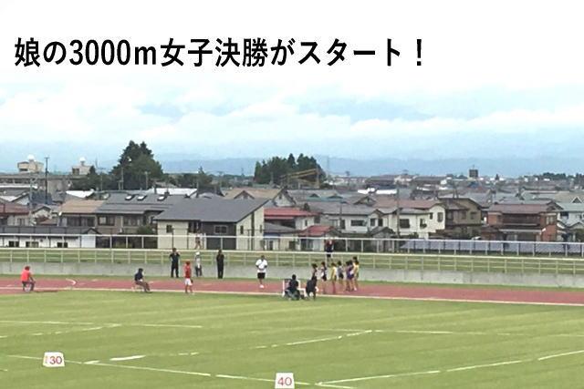 娘の3000m女子決勝がスタート!