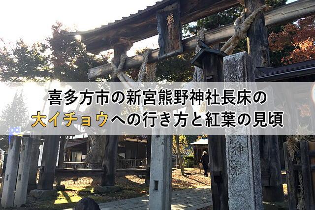 喜多方市の新宮熊野神社長床の大イチョウへの行き方と紅葉の見頃