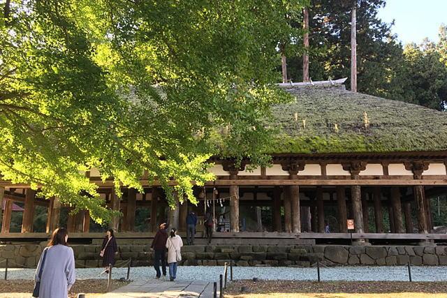 新宮熊野神社長床とイチョウ