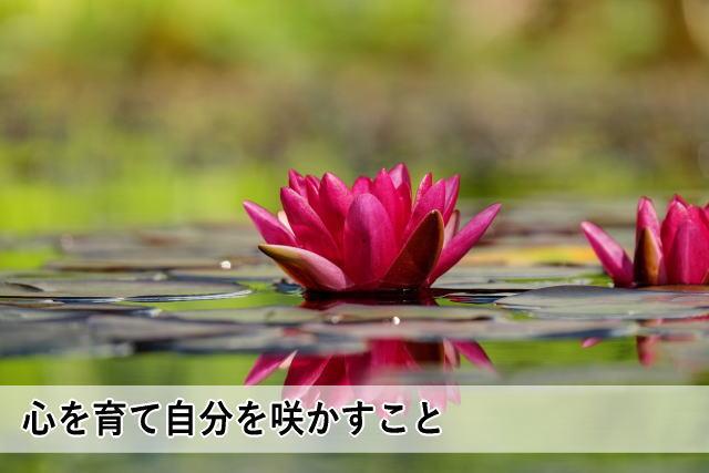心を育て自分を咲かすこと